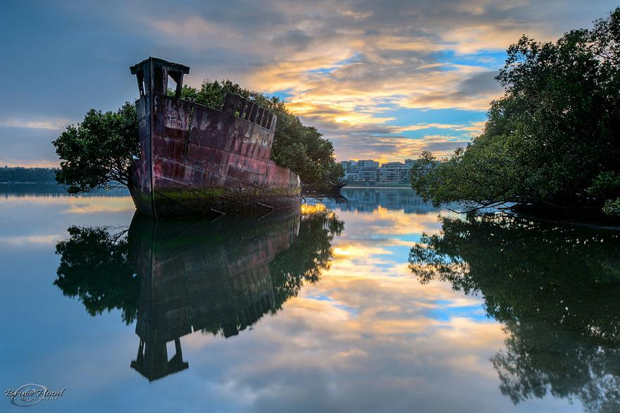 forgotten-places-kai-fagerstrom-102-year-old-floating-forest-in-sydney-australia