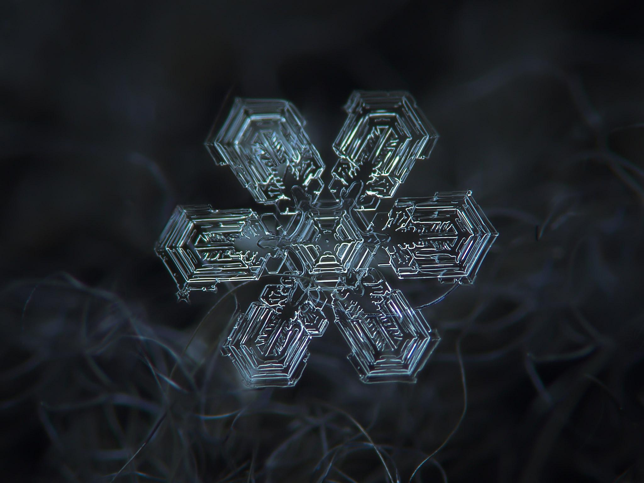 magnified-snowflakes-alexey-kljatov-03