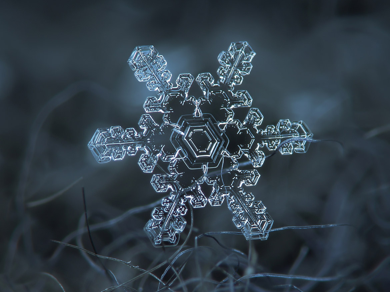 magnified-snowflakes-alexey-kljatov-06
