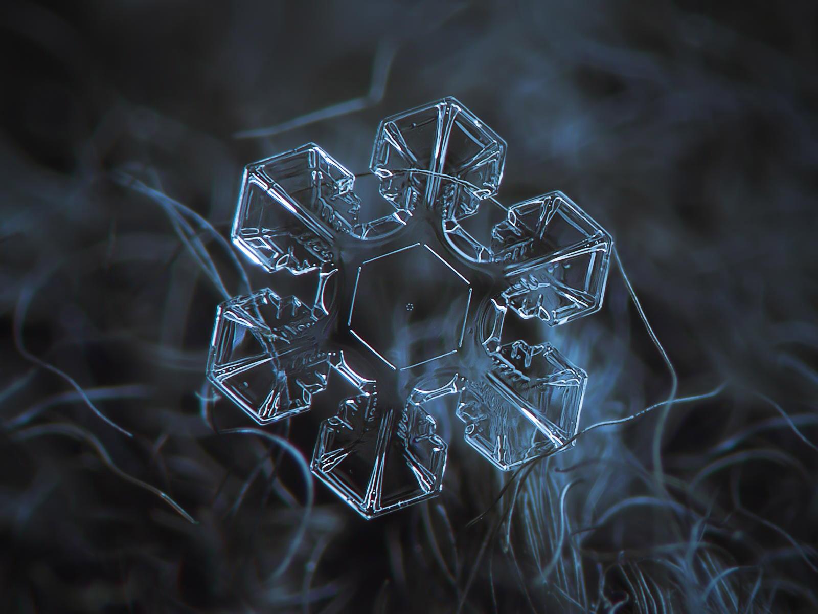 magnified-snowflakes-alexey-kljatov-1