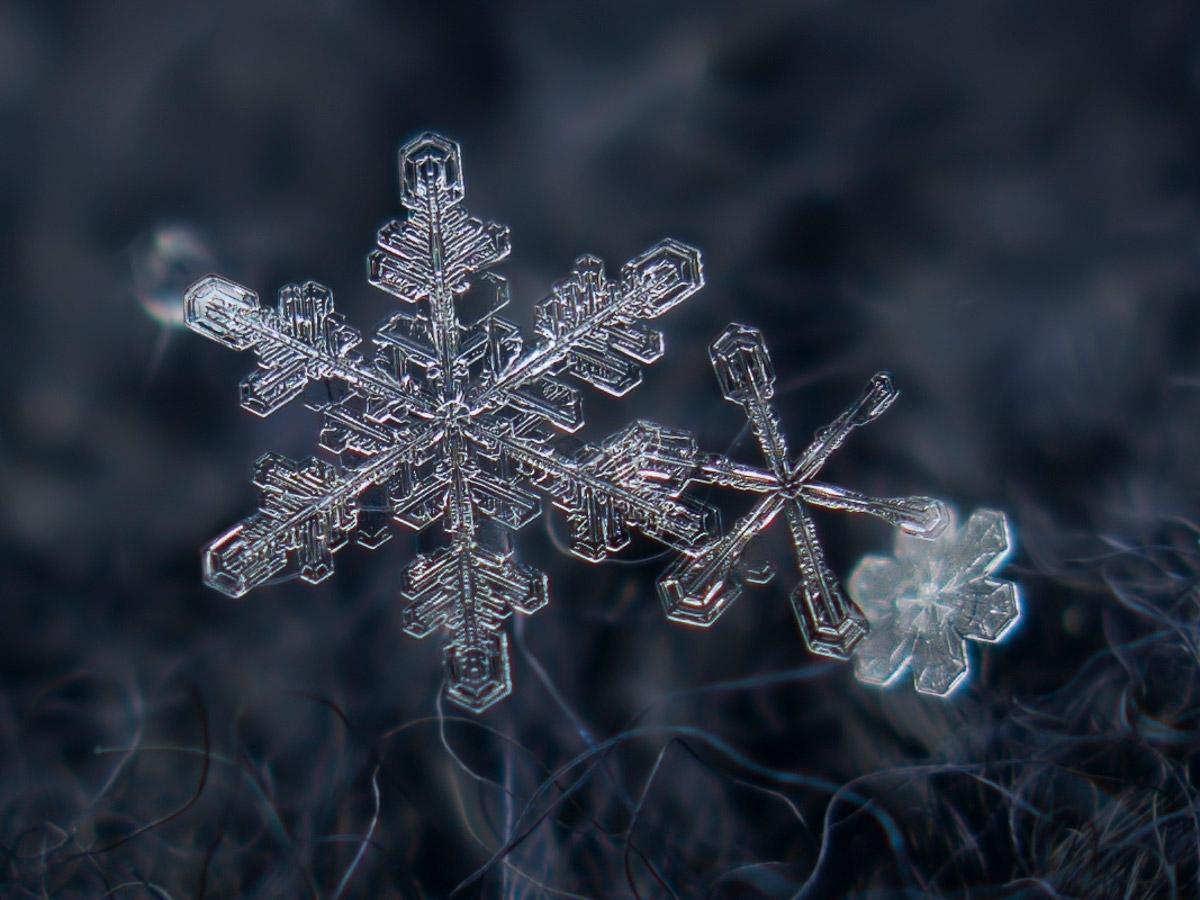 magnified-snowflakes-alexey-kljatov-14