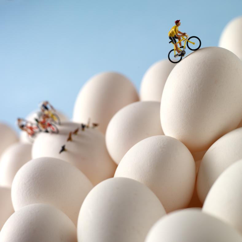 minimiam-eggs