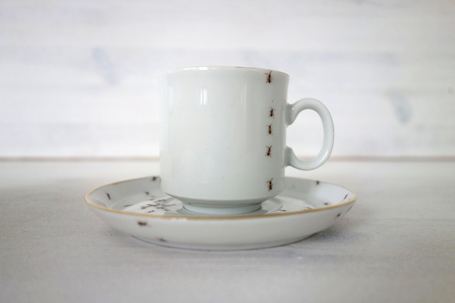 ants-on-porcelain-evelyn-bracklow-02