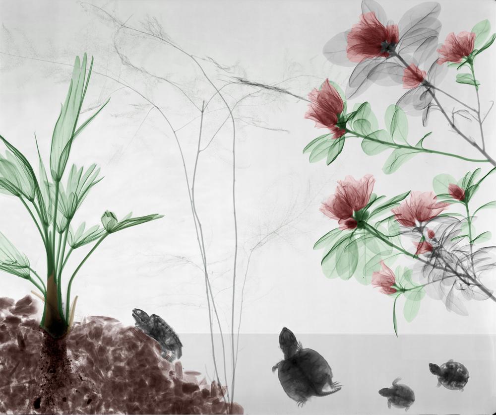 biorama-arie-vant-riet-03