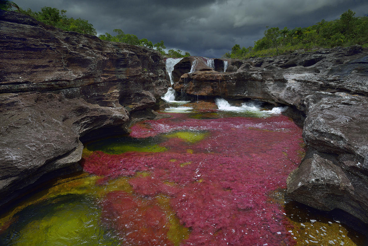 cano-cristales-liquid-rainbow-olivier-grunewald-27