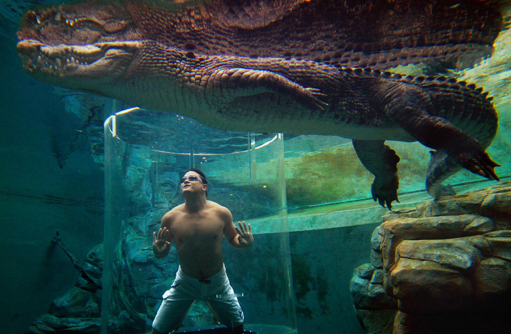 crocosaurus-cove--cage-of-death-01
