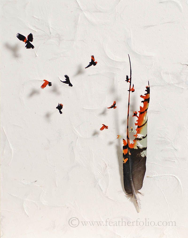feather-artistry-chris-maynard-14