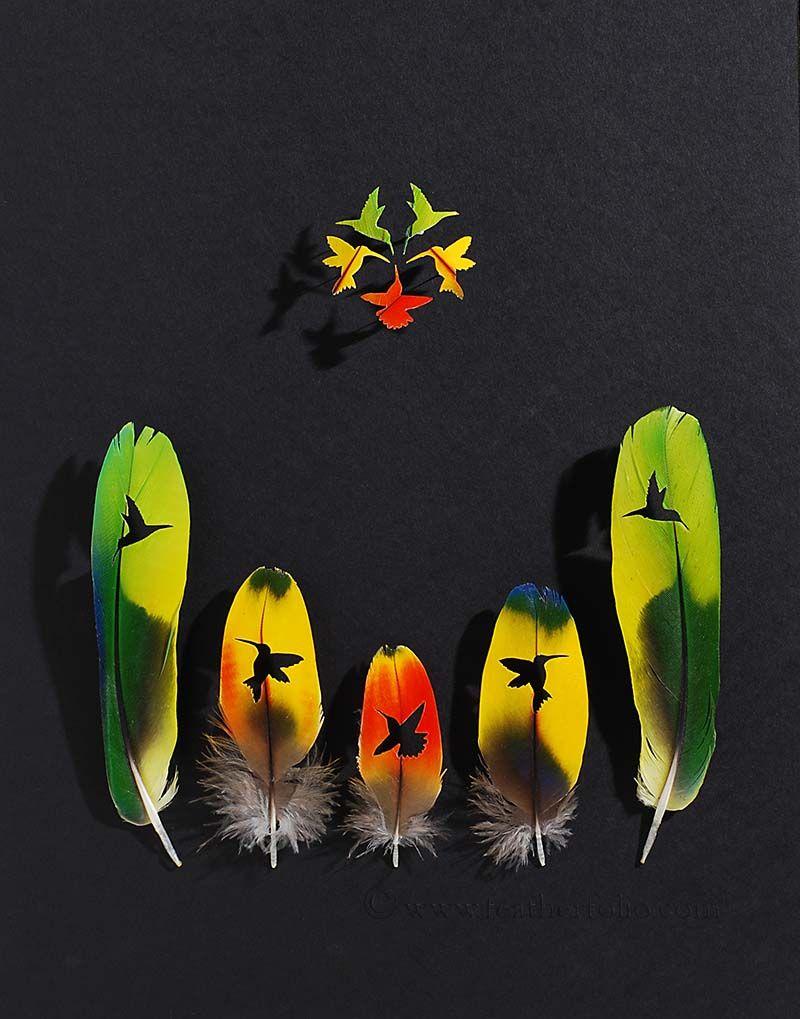 feather-artistry-chris-maynard-19