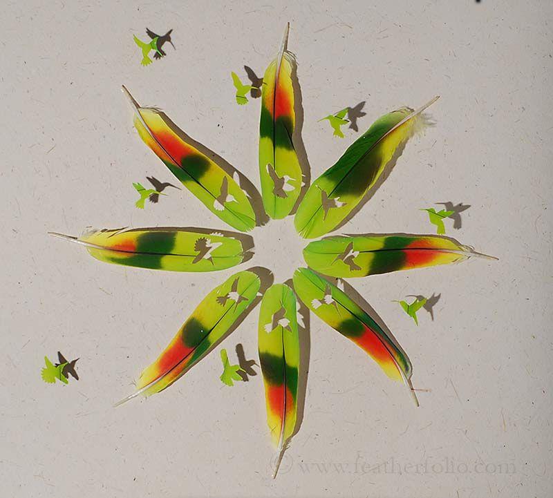 feather-artistry-chris-maynard-20