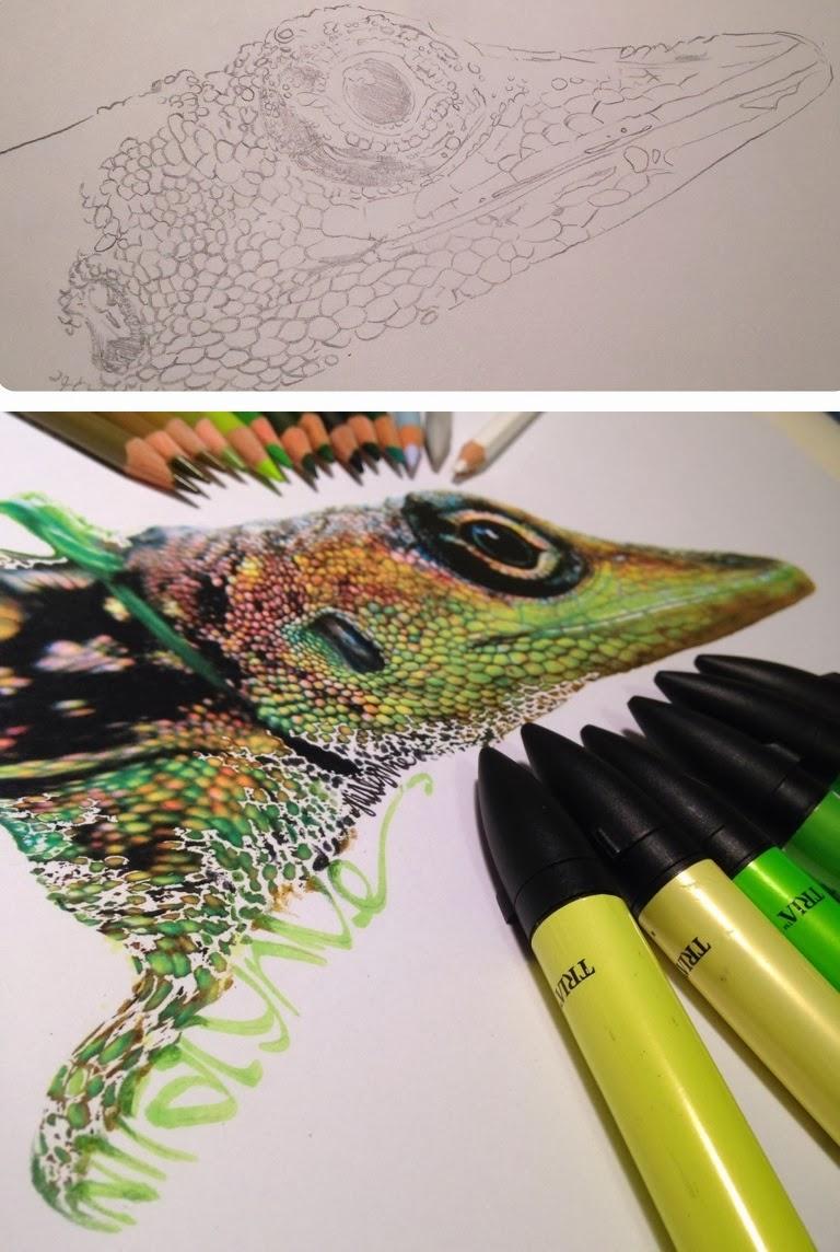 lifelike-illustrations-karla-mialynne-02