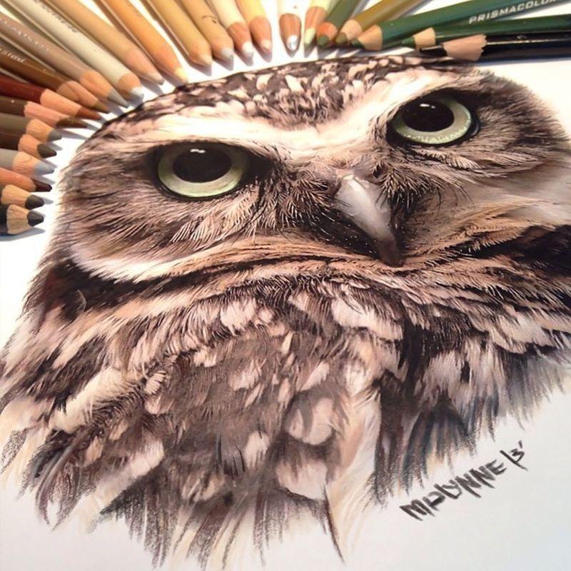 lifelike-illustrations-karla-mialynne-03