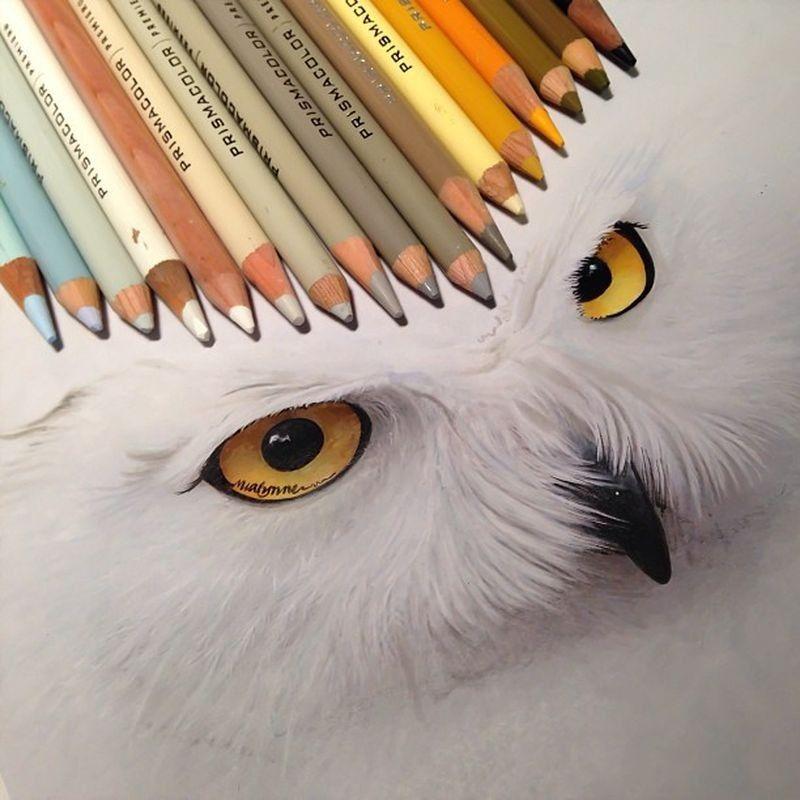 lifelike-illustrations-karla-mialynne-04