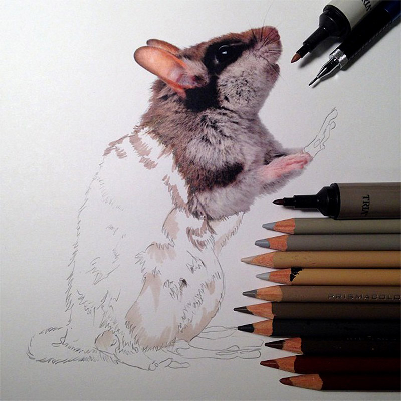 lifelike-illustrations-karla-mialynne-11