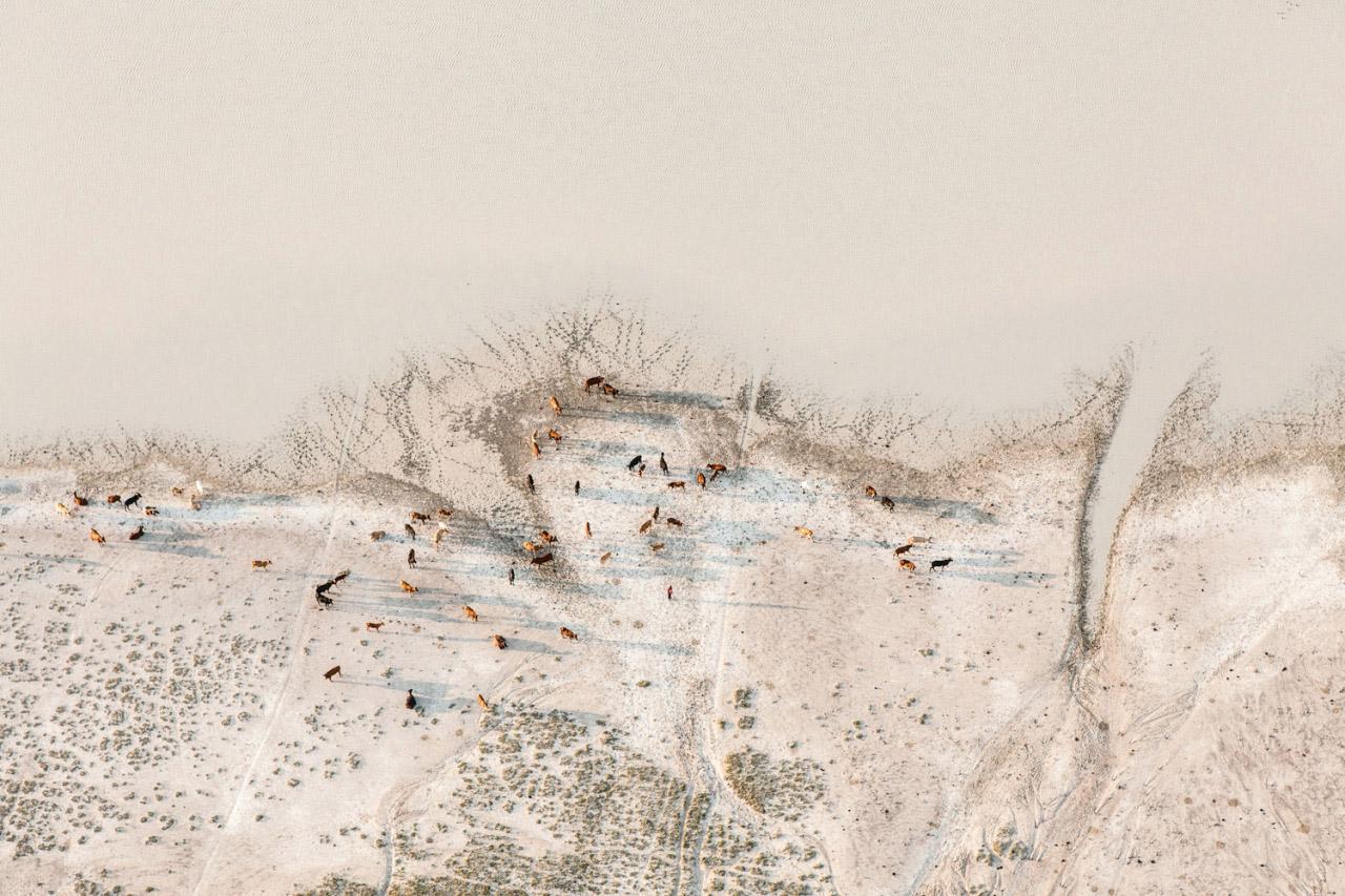 zack-seckler-botswana-wildlife-06