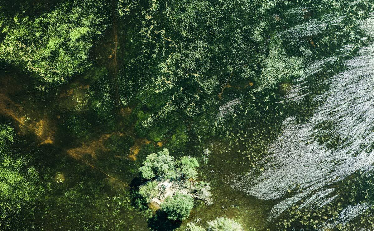 zack-seckler-botswana-wildlife-10