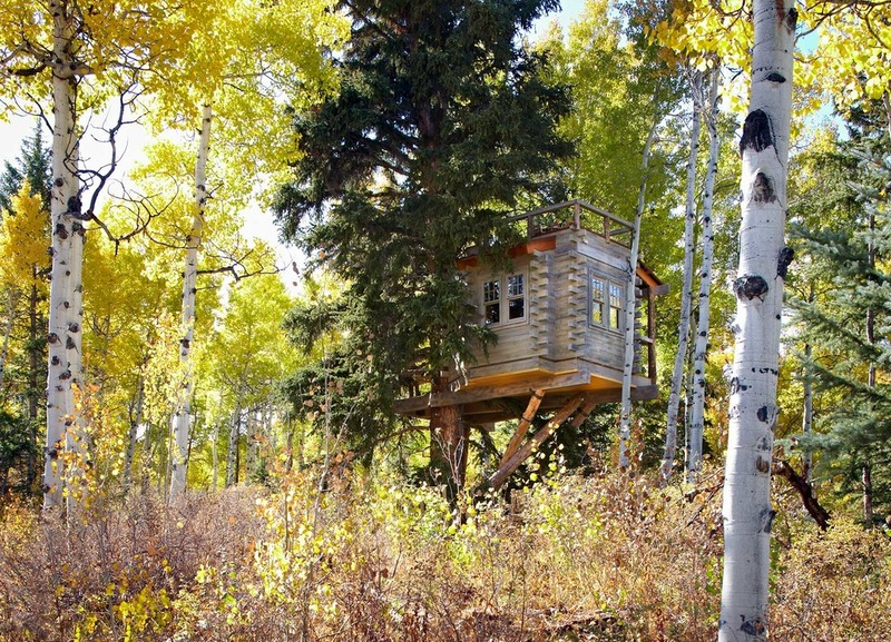adult-tree-house-missy-brown-04