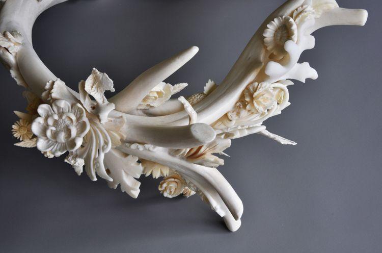 bone-sculptures-jennifer-trask-11