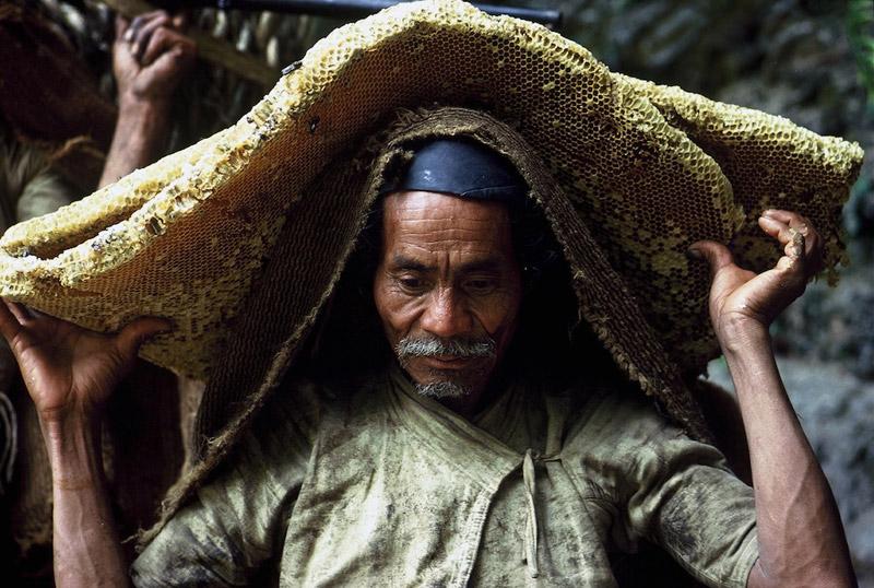 nepalese-honey-hunters-02