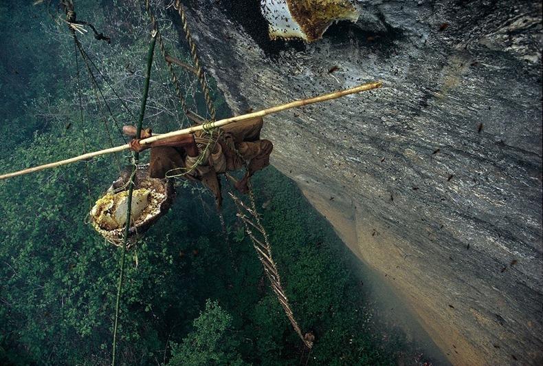 nepalese-honey-hunters-03