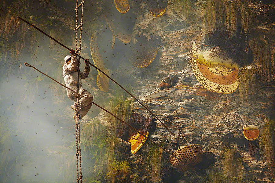 nepalese-honey-hunters-08