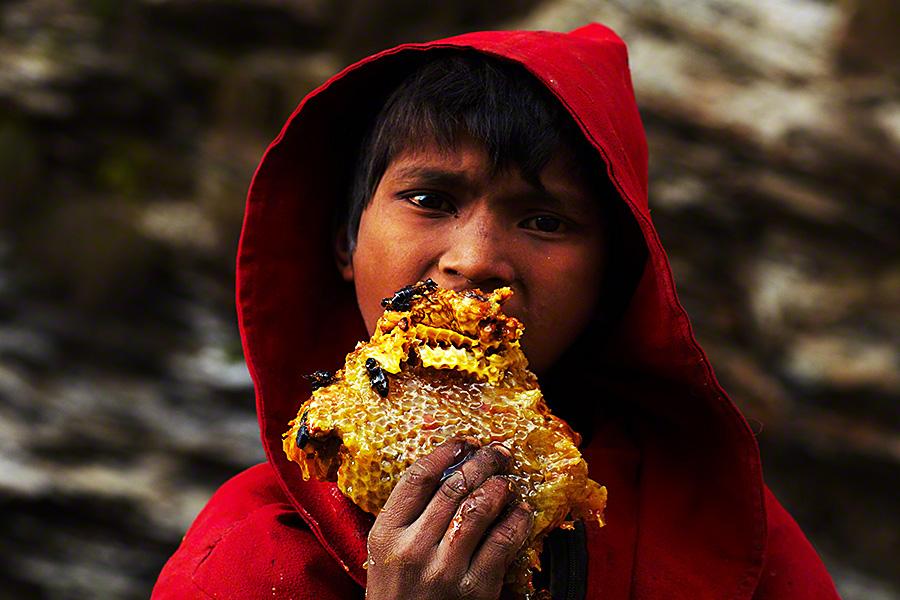 nepalese-honey-hunters-10