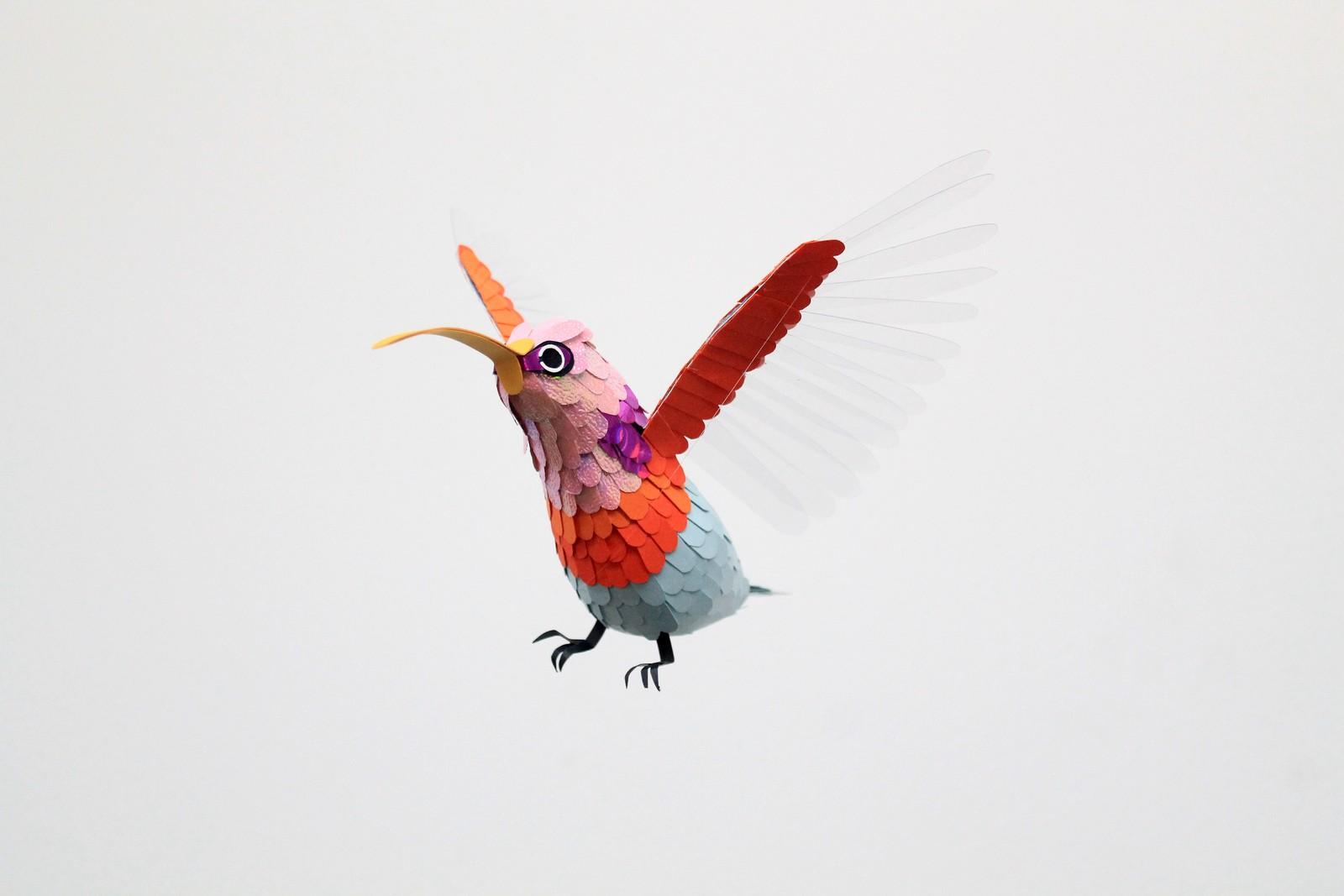 paper-birds-diana-beltran-herrera-02