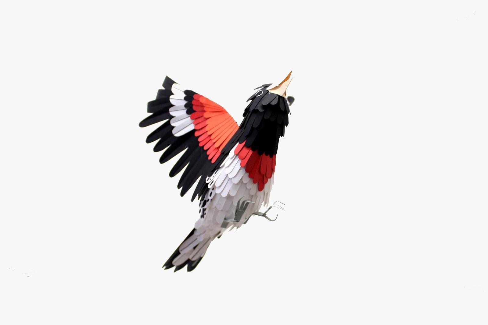 paper-birds-diana-beltran-herrera-05