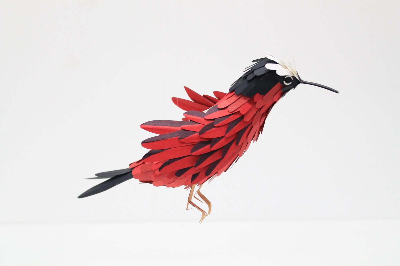 paper-birds-diana-beltran-herrera-06
