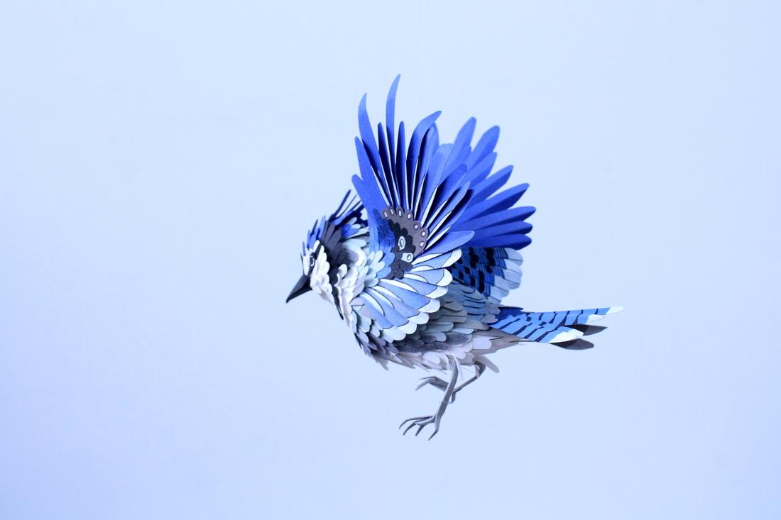 paper-birds-diana-beltran-herrera-19
