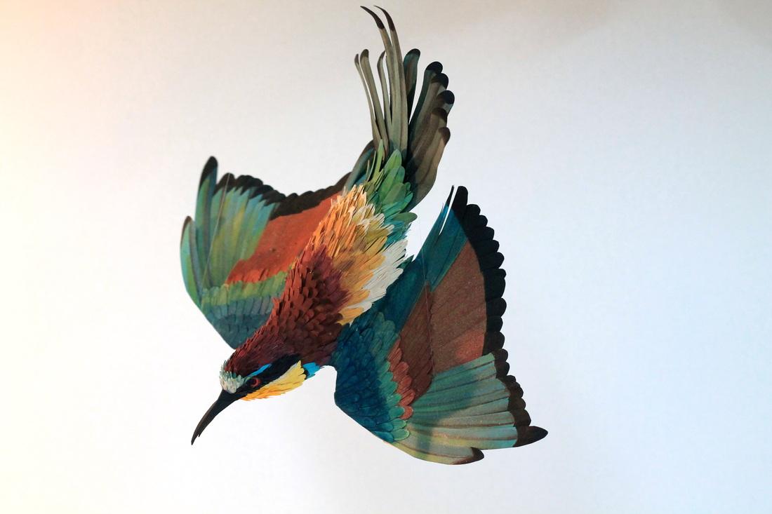 paper-birds-diana-beltran-herrera-22