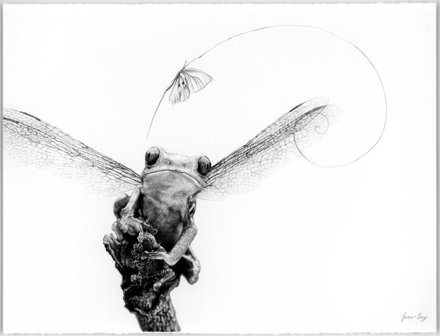 pencil-drawings-jono-dry-09