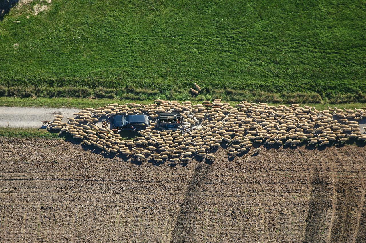 aerial-archaeology-klaus-leidorf-10