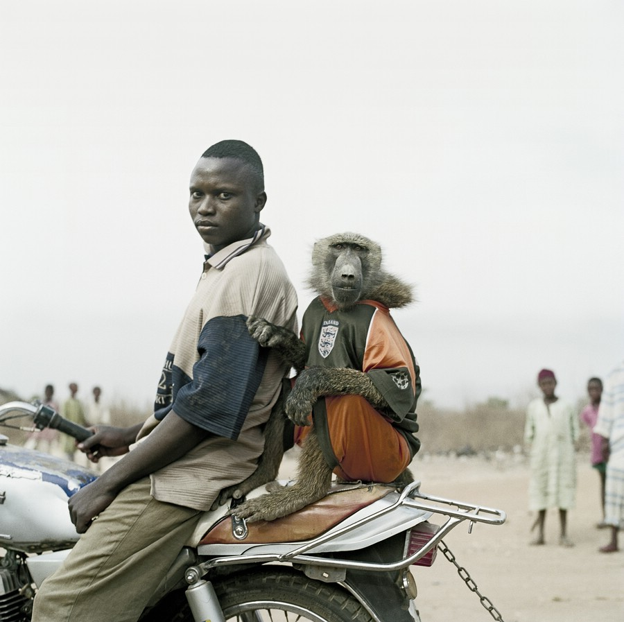 pieter-hugo-hyena-men-11