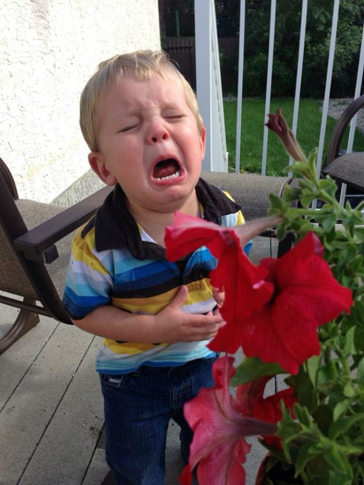 reasons-my-kid-is-crying-12