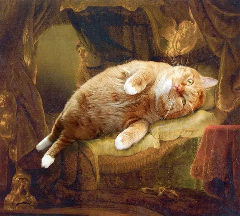 svetlana-petrova-fat-cat-02