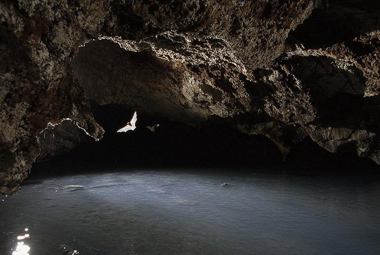 krubera-cave-15