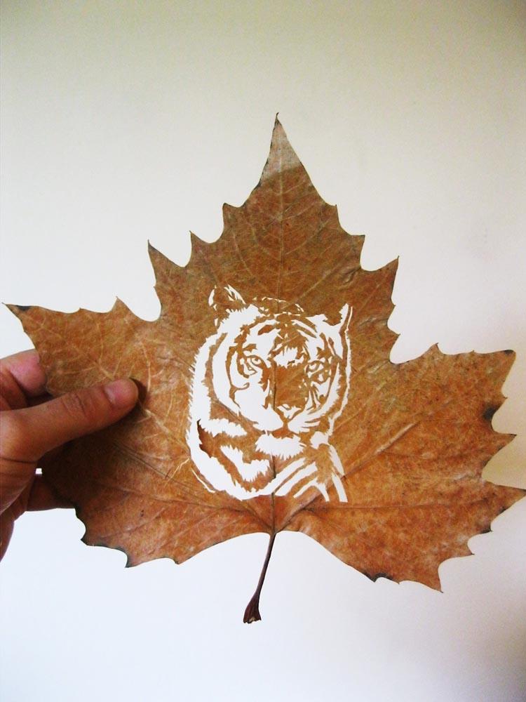 omid-asadi-leaf-art-02