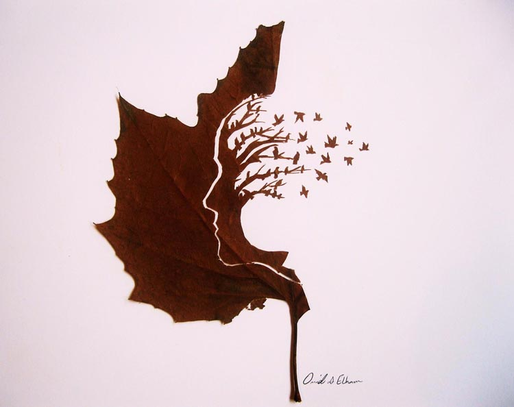 omid-asadi-leaf-art-04