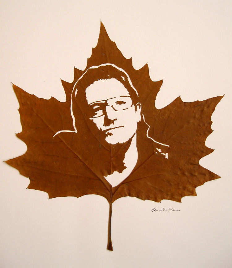 omid-asadi-leaf-art-07