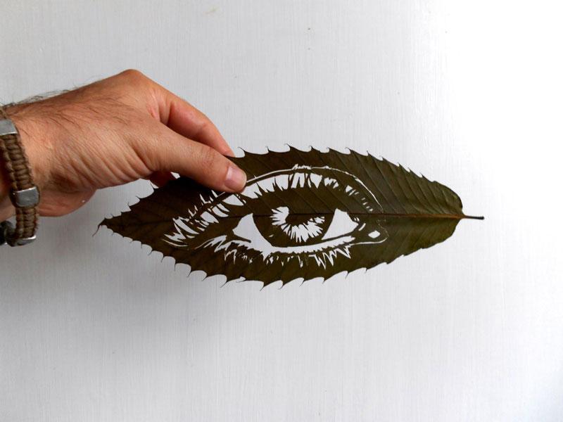 omid-asadi-leaf-art-08