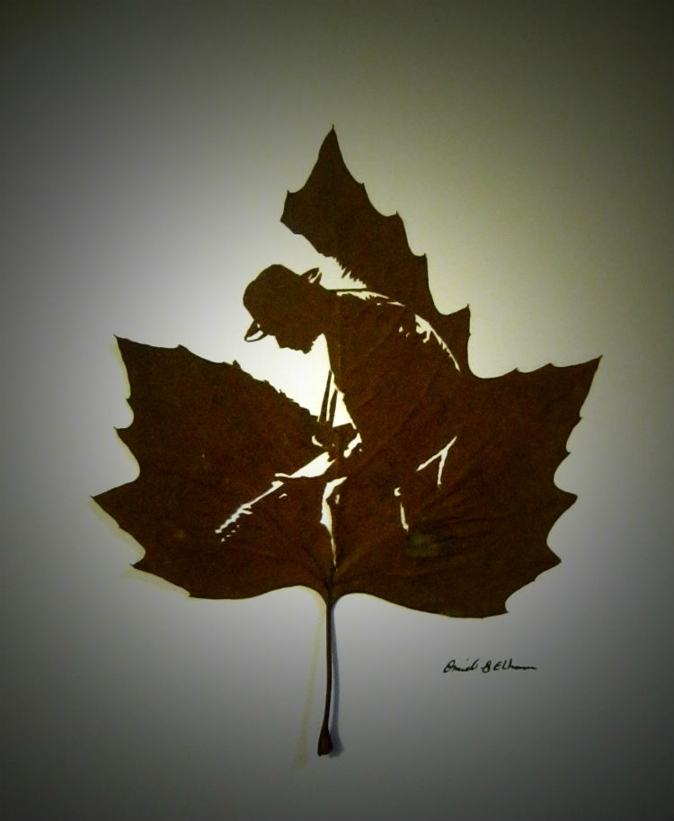 omid-asadi-leaf-art-09