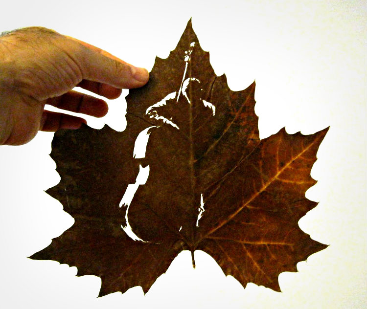 omid-asadi-leaf-art-10