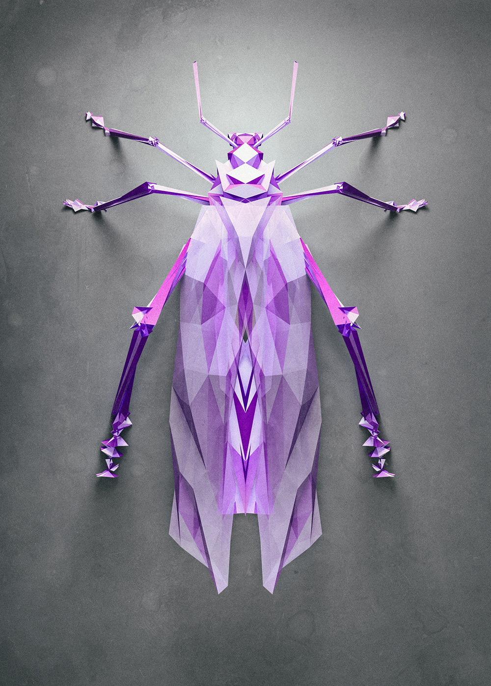 polygonal-insects-istvan-01