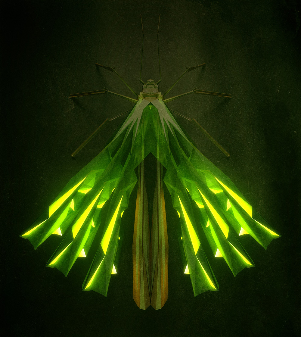 polygonal-insects-istvan-02