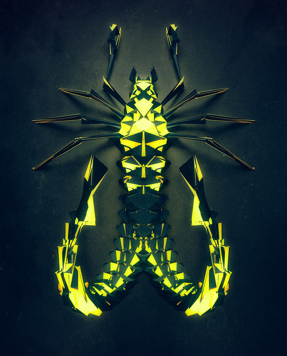 polygonal-insects-istvan-04