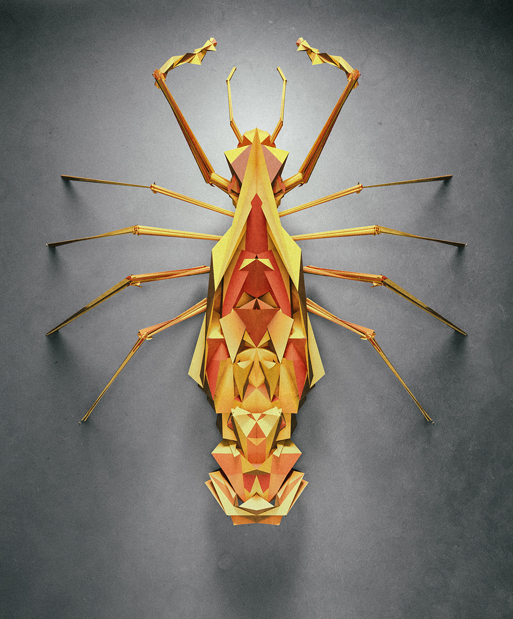 polygonal-insects-istvan-06
