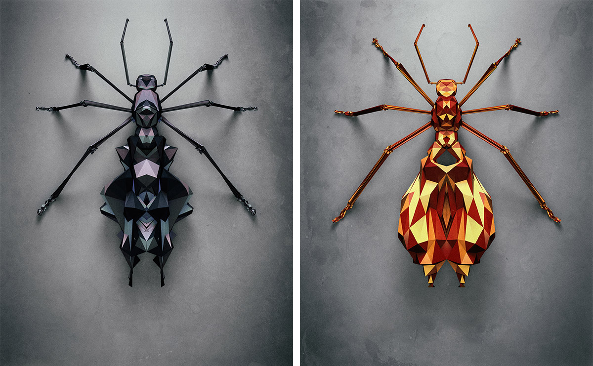 polygonal-insects-istvan-07