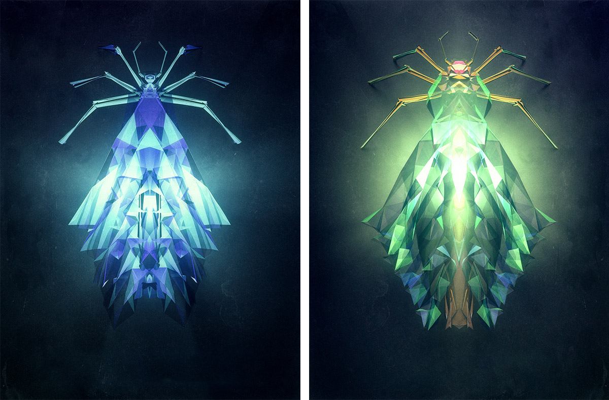 polygonal-insects-istvan-09