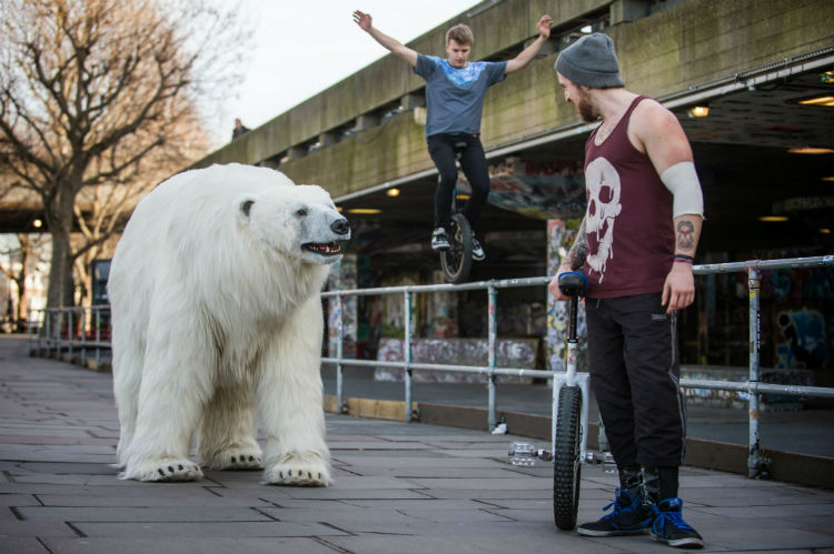 polarbear_london_fortitude_08