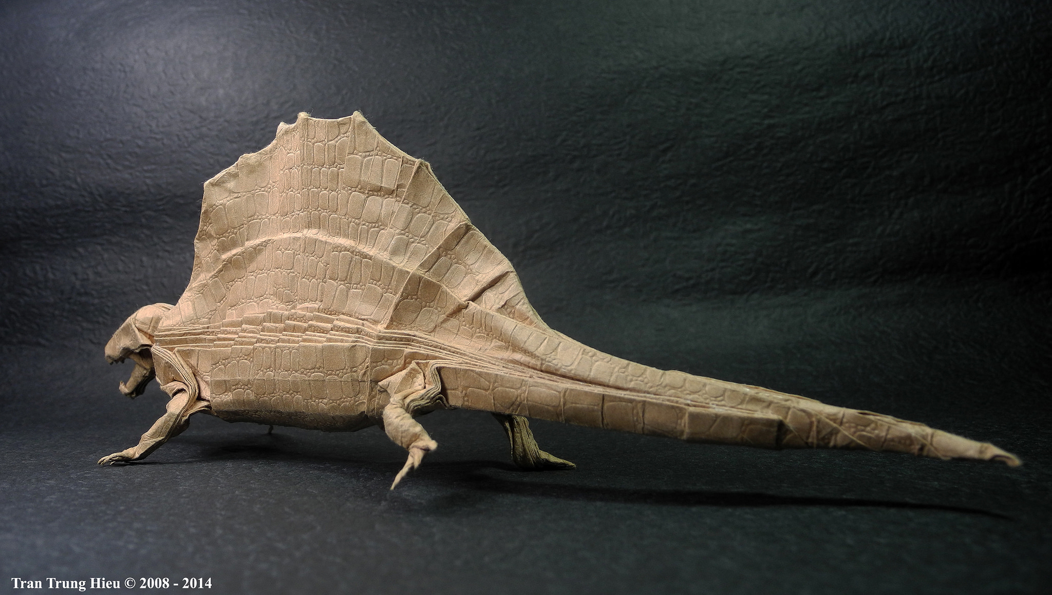 origami-tran-13